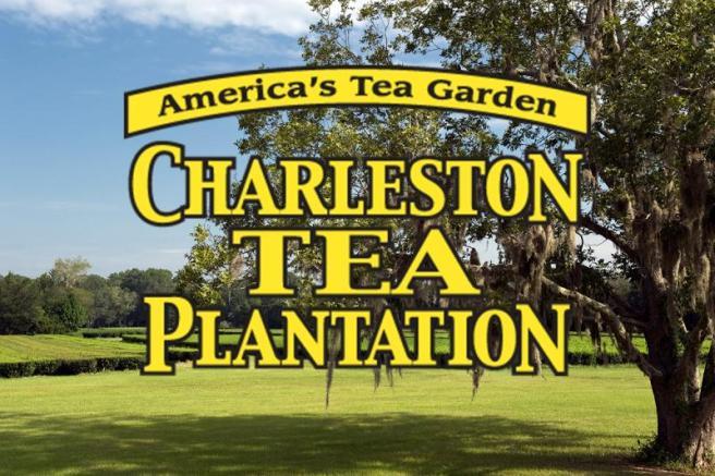 charlestonteaplantation01-1521555031